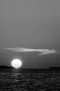 Black & White Sunset Wisp