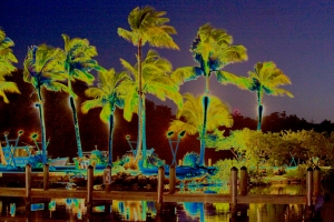 E Night Time Peninsula Solarize 4469